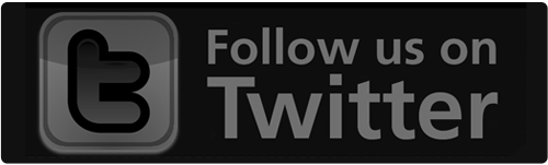 Twitter Follow Us button